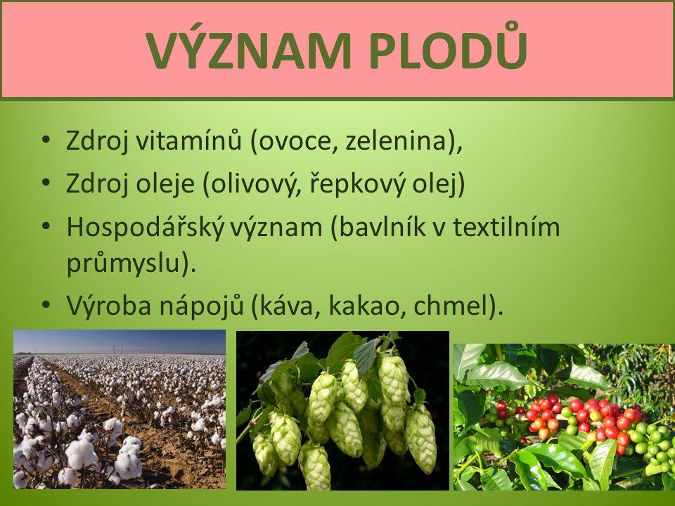 Zdroj vitamínů (ovoce, zelenina), Zdroj oleje (olivový, řepkový olej) Hospodářský význam (bavlník v textilním průmyslu). Výroba nápojů (káva, kakao, c