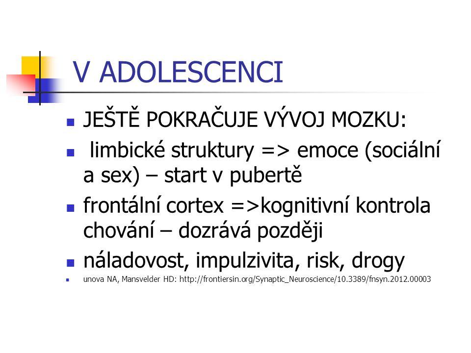 V ADOLESCENCI JEŠTĚ POKRAČUJE VÝVOJ MOZKU: limbické struktury => emoce (sociální a sex) – start v pubertě frontální cortex =>kognitivní kontrola chová