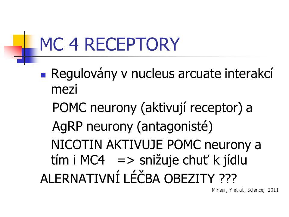 MC 4 RECEPTORY Regulovány v nucleus arcuate interakcí mezi POMC neurony (aktivují receptor) a AgRP neurony (antagonisté) NICOTIN AKTIVUJE POMC neurony