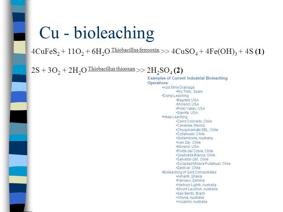 Cu - bioleaching 4CuFeS 2 + 11O 2 + 6H 2 O Thiobacillus ferrooxin >> 4CuSO 4 + 4Fe(OH) 3 + 4S (1) 2S + 3O 2 + 2H 2 O Thiobacillus thiooxan >> 2H 2 SO