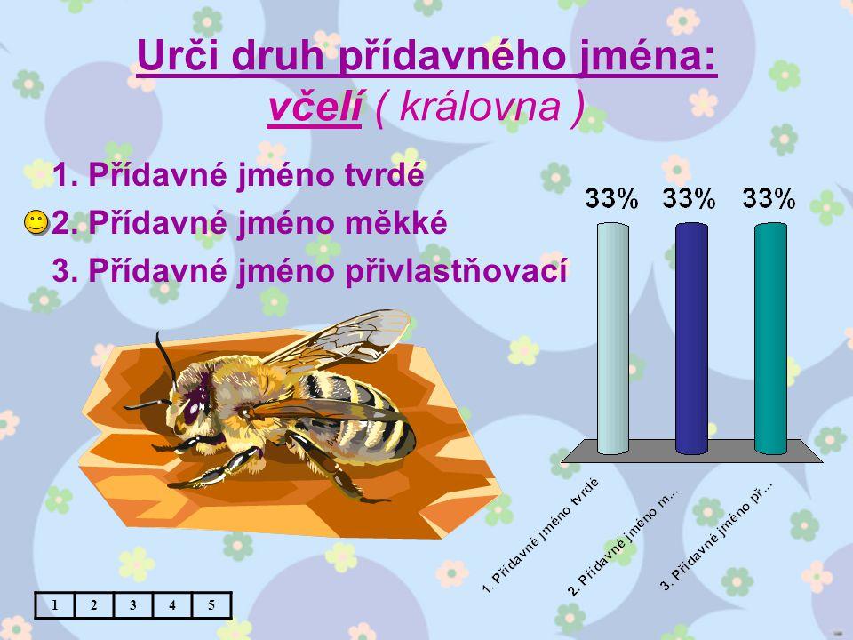 Urči druh přídavného jména: včelí ( královna ) 1. Přídavné jméno tvrdé 2.