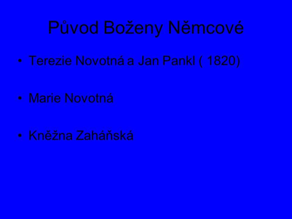Původ Boženy Němcové Terezie Novotná a Jan Pankl ( 1820) Marie Novotná Kněžna Zaháňská