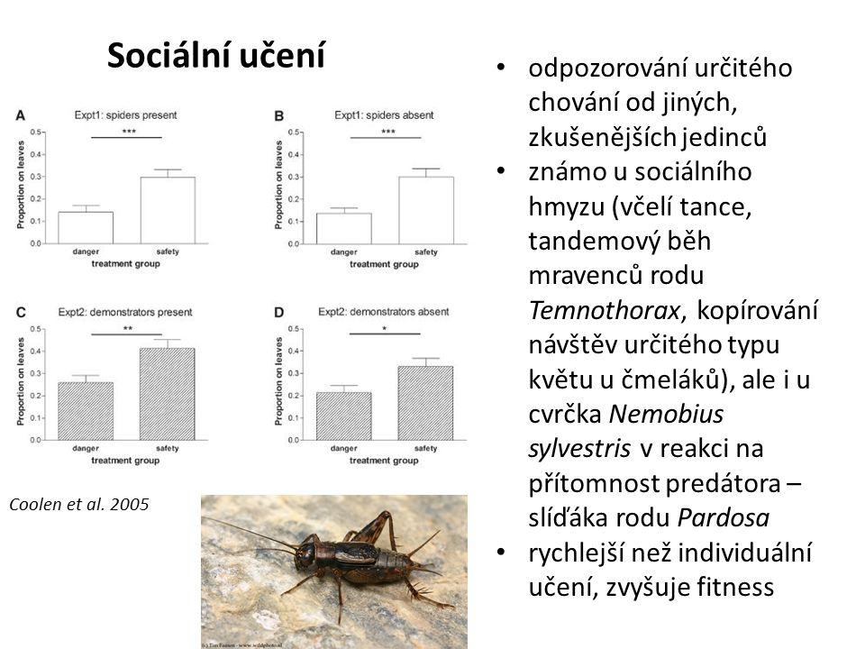 Sociální učení odpozorování určitého chování od jiných, zkušenějších jedinců známo u sociálního hmyzu (včelí tance, tandemový běh mravenců rodu Temnot