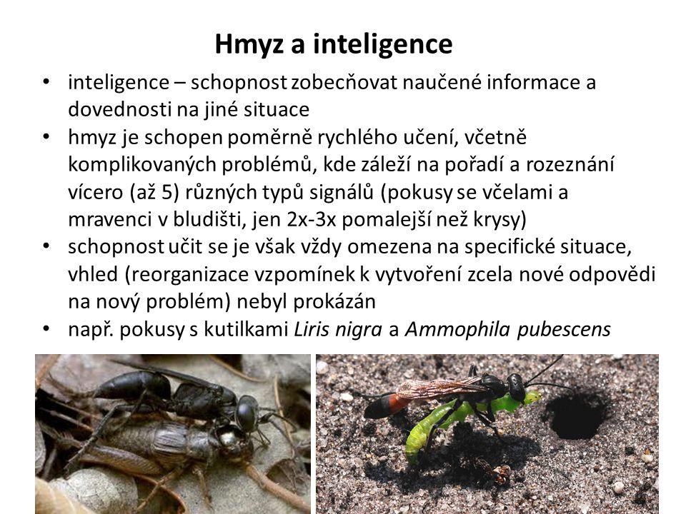 Hmyz a inteligence inteligence – schopnost zobecňovat naučené informace a dovednosti na jiné situace hmyz je schopen poměrně rychlého učení, včetně ko