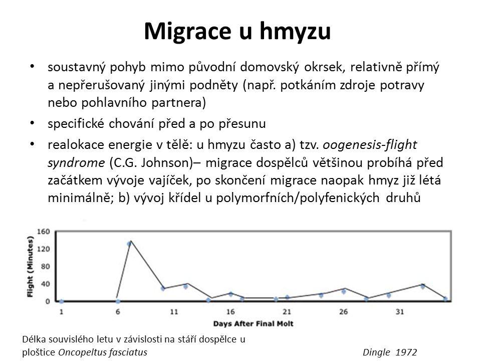 Migrace u hmyzu Dingle 1972 Délka souvislého letu v závislosti na stáří dospělce u ploštice Oncopeltus fasciatus soustavný pohyb mimo původní domovský