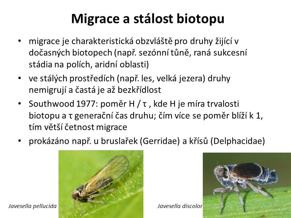 Migrace a stálost biotopu migrace je charakteristická obzvláště pro druhy žijící v dočasných biotopech (např. sezónní tůně, raná sukcesní stádia na po
