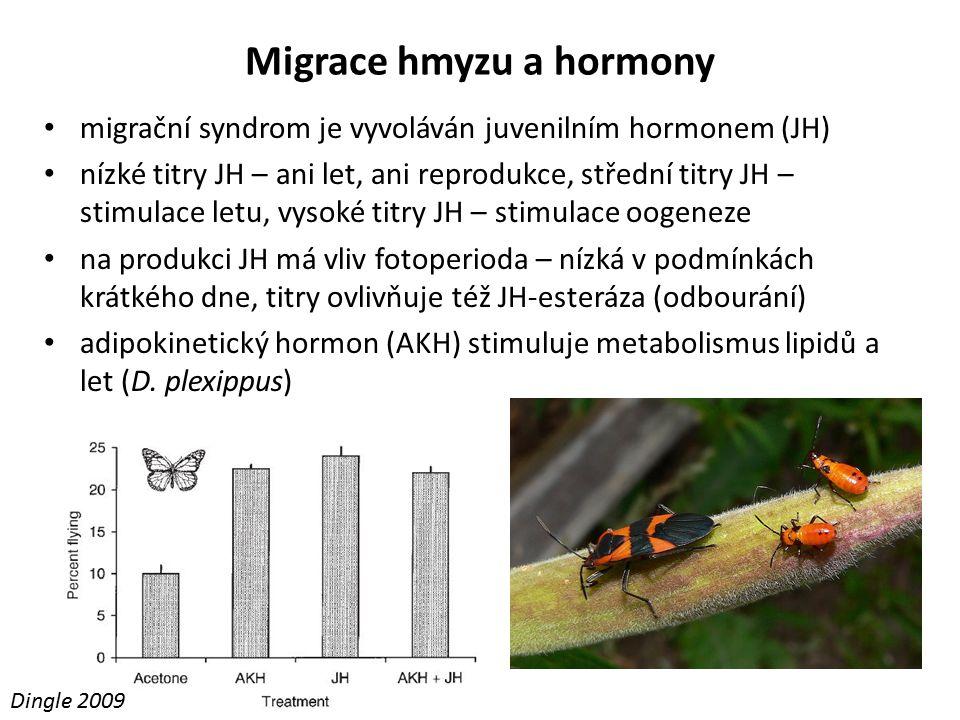 Migrace hmyzu a hormony migrační syndrom je vyvoláván juvenilním hormonem (JH) nízké titry JH – ani let, ani reprodukce, střední titry JH – stimulace