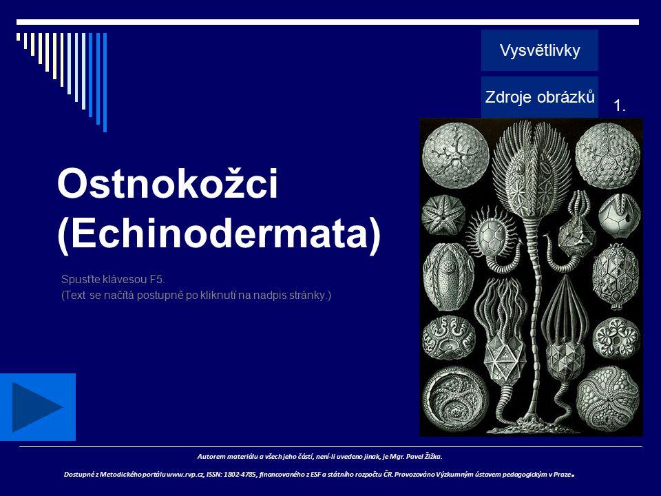 Ostnokožci (Echinodermata) Spusťte klávesou F5. (Text se načítá postupně po kliknutí na nadpis stránky.) Autorem materiálu a všech jeho částí, není-li