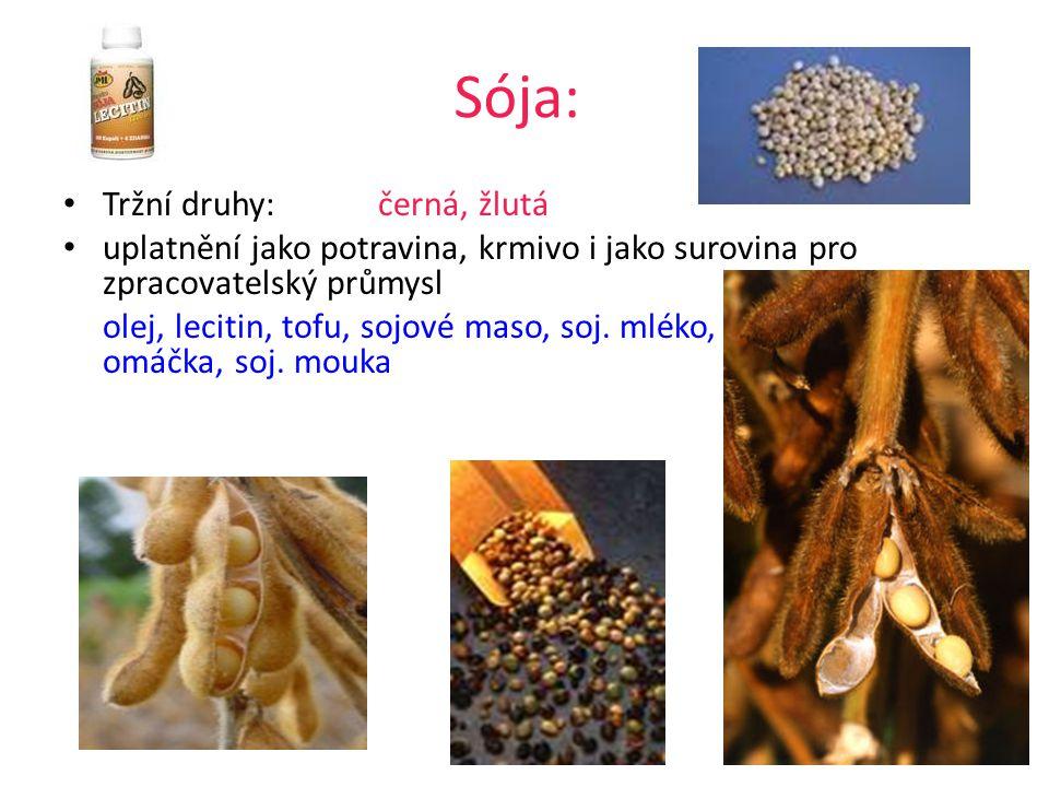 Sója: Tržní druhy:černá, žlutá uplatnění jako potravina, krmivo i jako surovina pro zpracovatelský průmysl olej, lecitin, tofu, sojové maso, soj.