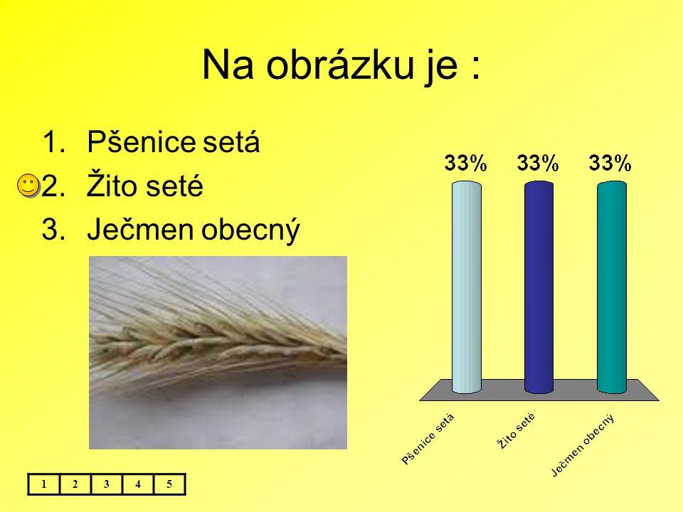Na obrázku je : 12345 1.Pšenice setá 2.Žito seté 3.Ječmen obecný