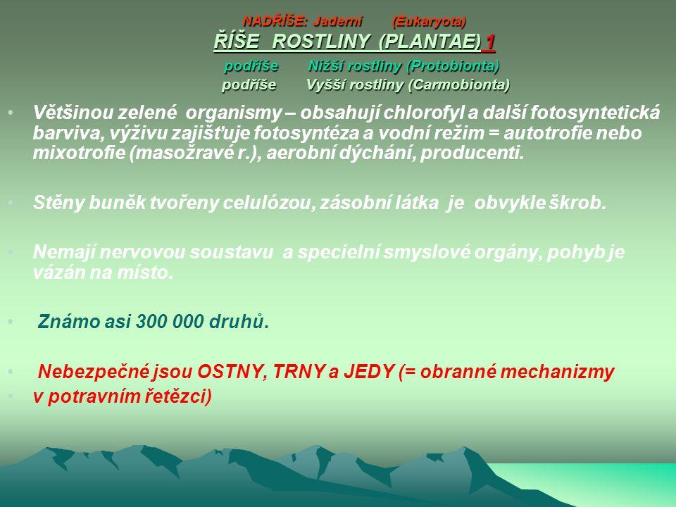NADŘÍŠE: Jaderní (Eukaryota) ŘÍŠE ROSTLINY (PLANTAE) 1 podříše Nižší rostliny (Protobionta) podříše Vyšší rostliny (Carmobionta) NADŘÍŠE: Jaderní (Eukaryota) ŘÍŠE ROSTLINY (PLANTAE) 1 podříše Nižší rostliny (Protobionta) podříše Vyšší rostliny (Carmobionta) Většinou zelené organismy – obsahují chlorofyl a další fotosyntetická barviva, výživu zajišťuje fotosyntéza a vodní režim = autotrofie nebo mixotrofie (masožravé r.), aerobní dýchání, producenti.