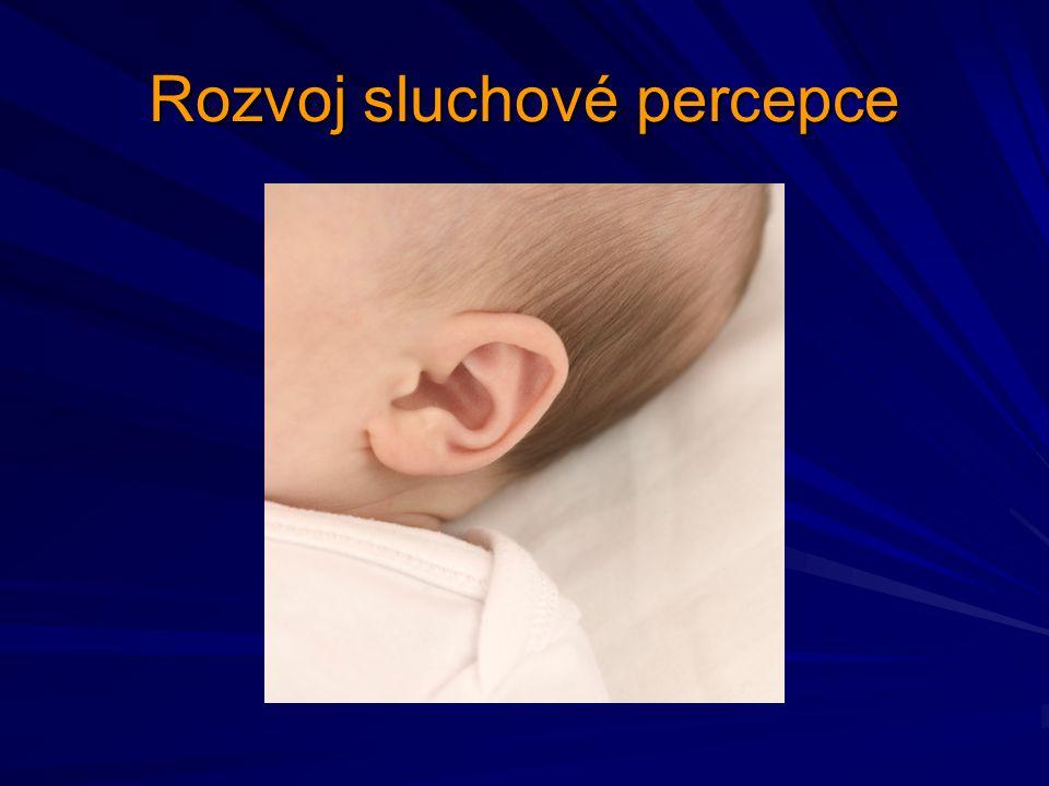 Rozvoj sluchové percepce