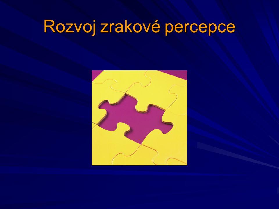 Rozvoj zrakové percepce