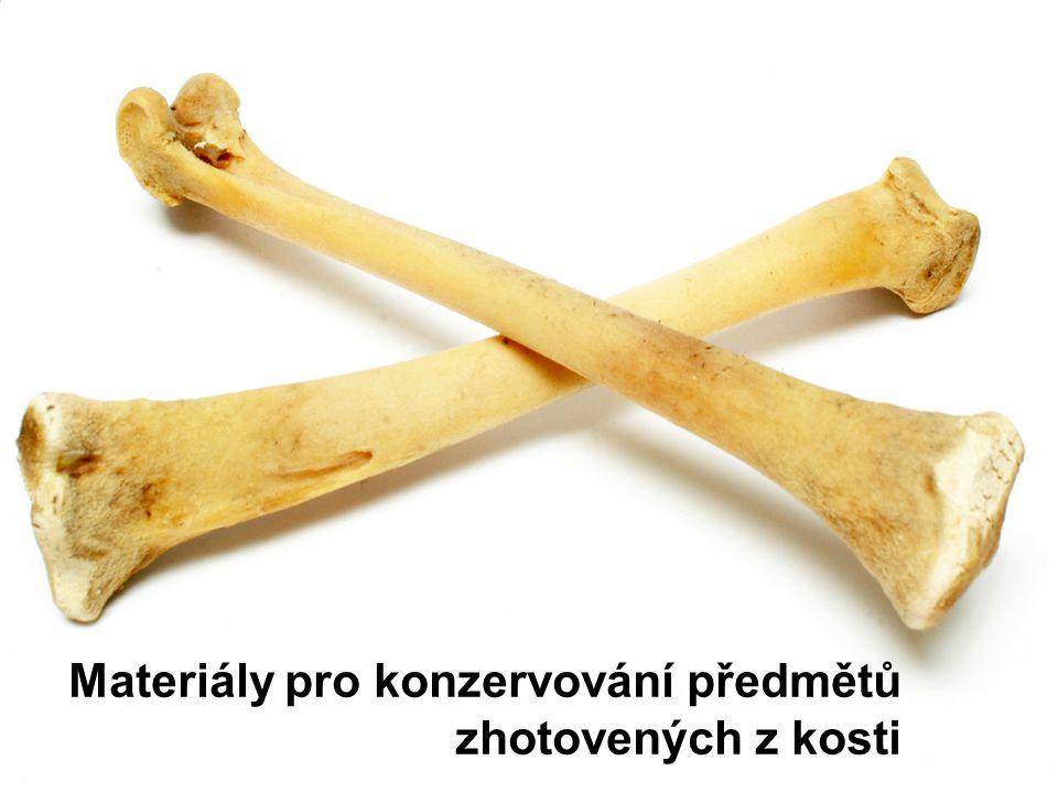 Kost je složitým organicko-minerálním materiálem.