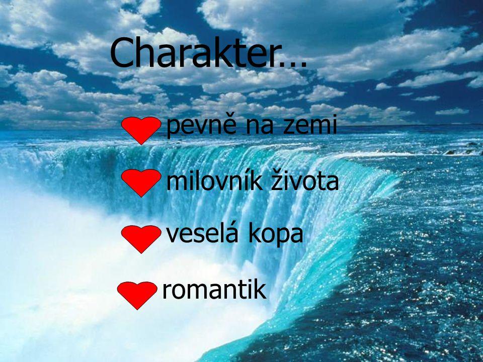 Charakter… pevně na zemi milovník života veselá kopa romantik