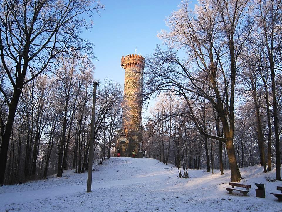 Cvilínská rozhledna se tyčí nad městem ve výšce 436 m n.