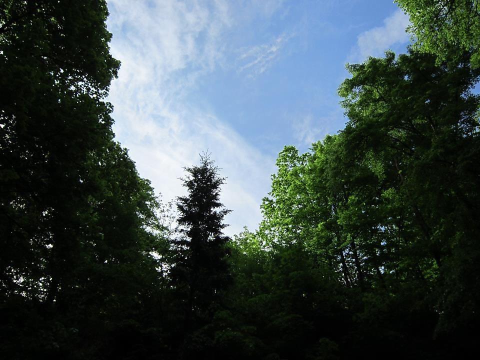 18. května před velkou bouřkou a lijákem, po té nádherná duha Foto Magda