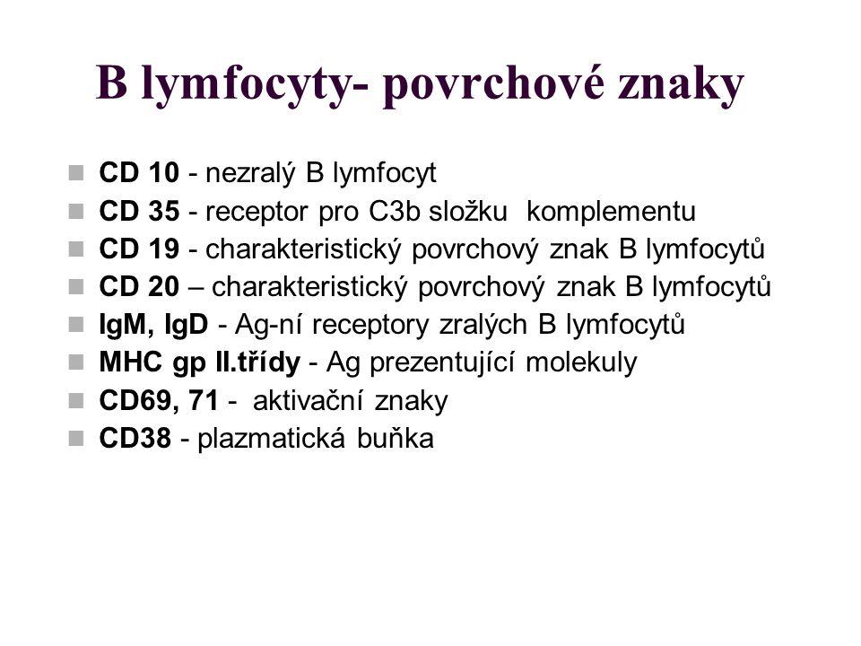 B lymfocyty- povrchové znaky CD 10 - nezralý B lymfocyt CD 35 - receptor pro C3b složku komplementu CD 19 - charakteristický povrchový znak B lymfocyt
