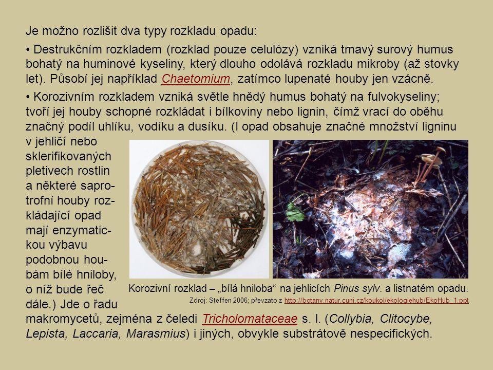 Je možno rozlišit dva typy rozkladu opadu: Destrukčním rozkladem (rozklad pouze celulózy) vzniká tmavý surový humus bohatý na huminové kyseliny, který dlouho odolává rozkladu mikroby (až stovky let).