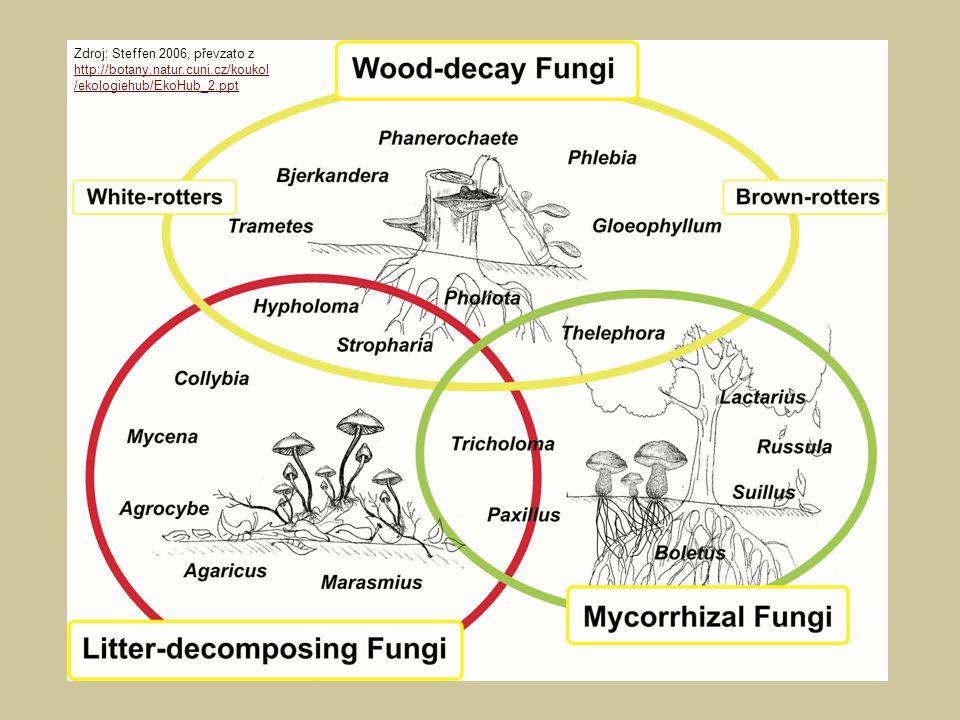 Zdroj: Steffen 2006, převzato z http://botany.natur.cuni.cz/koukol /ekologiehub/EkoHub_2.ppt