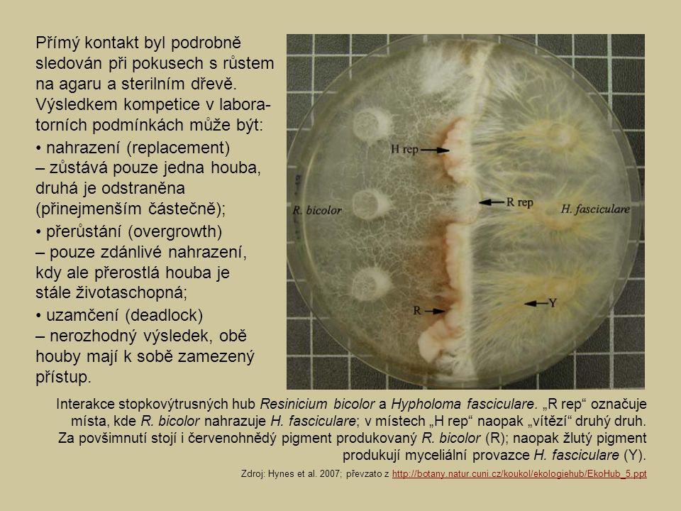 Přímý kontakt byl podrobně sledován při pokusech s růstem na agaru a sterilním dřevě. Výsledkem kompetice v labora- torních podmínkách může být: nahra