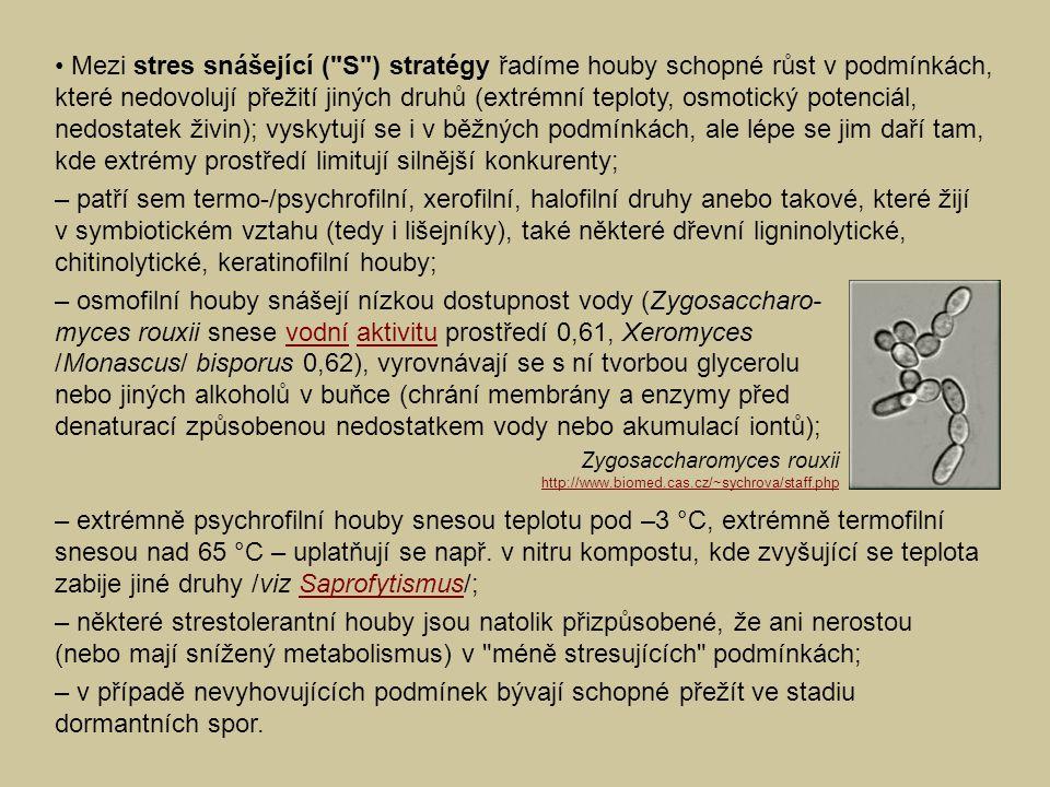 Mezi stres snášející ( S ) stratégy řadíme houby schopné růst v podmínkách, které nedovolují přežití jiných druhů (extrémní teploty, osmotický potenciál, nedostatek živin); vyskytují se i v běžných podmínkách, ale lépe se jim daří tam, kde extrémy prostředí limitují silnější konkurenty; – patří sem termo-/psychrofilní, xerofilní, halofilní druhy anebo takové, které žijí v symbiotickém vztahu (tedy i lišejníky), také některé dřevní ligninolytické, chitinolytické, keratinofilní houby; – osmofilní houby snášejí nízkou dostupnost vody (Zygosaccharo- myces rouxii snese vodní aktivitu prostředí 0,61, Xeromycesvodníaktivitu /Monascus/ bisporus 0,62), vyrovnávají se s ní tvorbou glycerolu nebo jiných alkoholů v buňce (chrání membrány a enzymy před denaturací způsobenou nedostatkem vody nebo akumulací iontů); – extrémně psychrofilní houby snesou teplotu pod –3 °C, extrémně termofilní snesou nad 65 °C – uplatňují se např.