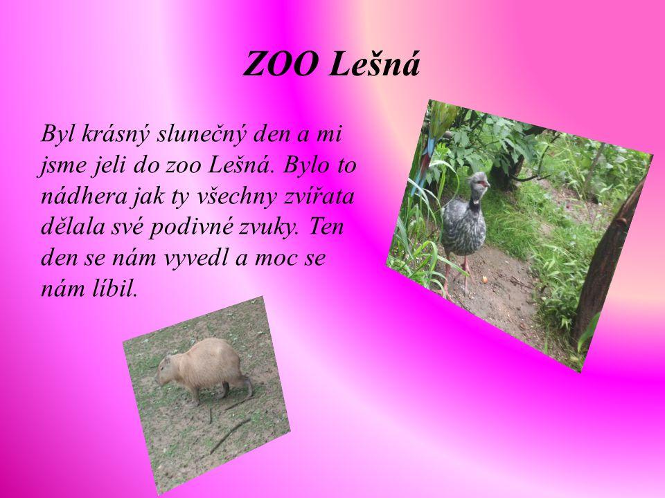 ZOO Lešná Byl krásný slunečný den a mi jsme jeli do zoo Lešná. Bylo to nádhera jak ty všechny zvířata dělala své podivné zvuky. Ten den se nám vyvedl