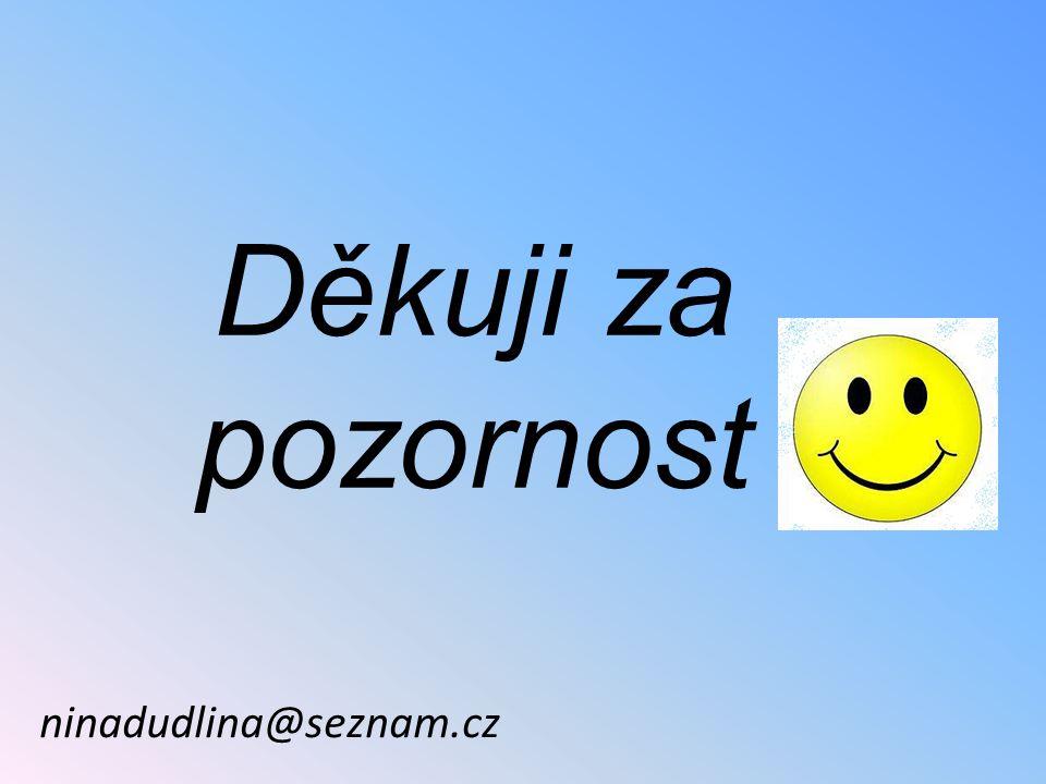 Děkuji za pozornost ninadudlina@seznam.cz
