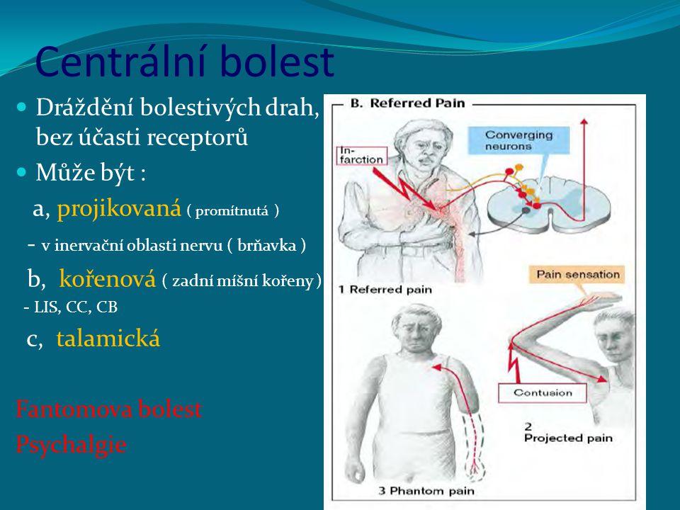Centrální bolest Dráždění bolestivých drah, bez účasti receptorů Může být : a, projikovaná ( promítnutá ) - v inervační oblasti nervu ( brňavka ) b, k