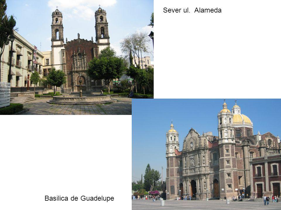 Sever ul. Alameda Basilica de Guadelupe