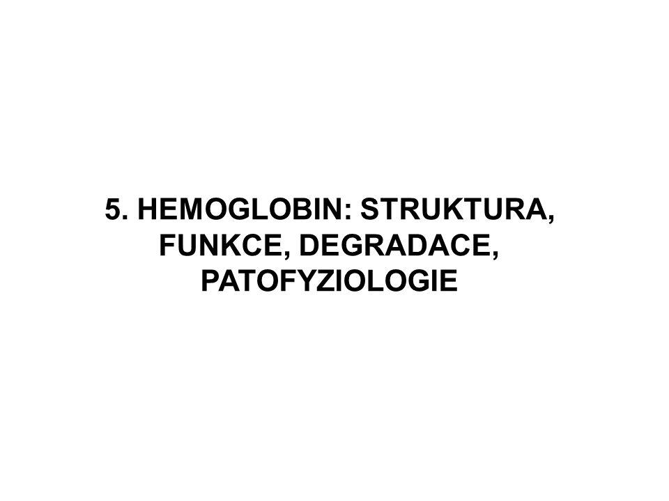 5. HEMOGLOBIN: STRUKTURA, FUNKCE, DEGRADACE, PATOFYZIOLOGIE