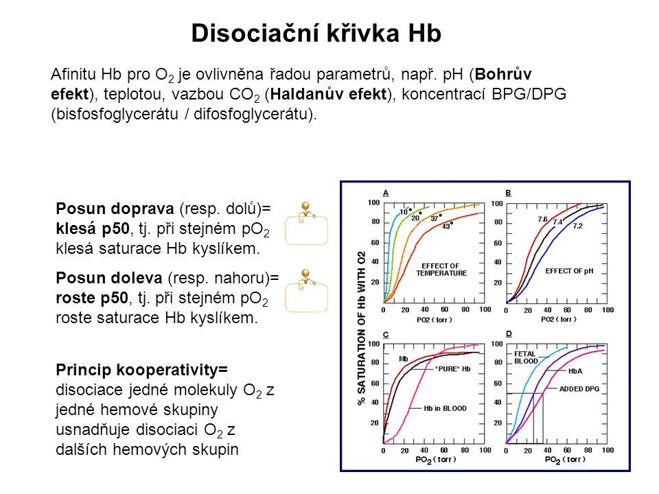 Afinitu Hb pro O 2 je ovlivněna řadou parametrů, např. pH (Bohrův efekt), teplotou, vazbou CO 2 (Haldanův efekt), koncentrací BPG/DPG (bisfosfoglycerá