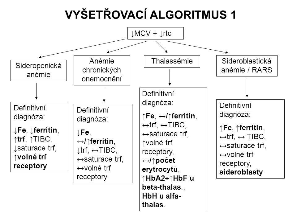 VYŠETŘOVACÍ ALGORITMUS 1 ↓MCV + ↓rtc Sideropenická anémie Definitivní diagnóza: ↓Fe, ↓ferritin, ↑trf, ↑TIBC, ↓saturace trf, ↑volné trf receptory Anémi