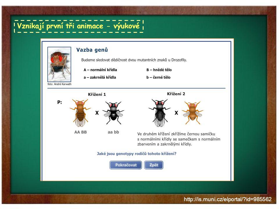 http://is.muni.cz/elportal/?id=985562 Další využití animací skriptum Praktikum z obecné genetiky využívá řada středních škol a gymnázií, kterým je tak k dispozici i výuku oživující pomůcka Noc vědců 2011 – soutěž ve skládání chromozomů Výstava v Mendelově muzeu – uvedené animace budou součástí expozice, která bude mít za úkol představit genetiku jako vědu zábavnou formou zejména dětem do 14 let Vyzkoušejte sami na stránkách Elportálu MU http://is.muni.cz/elportal/?id=985562 k 7.9.2012 více než 3 000 přístupů (nezapočítán podzimní semestr 2011)