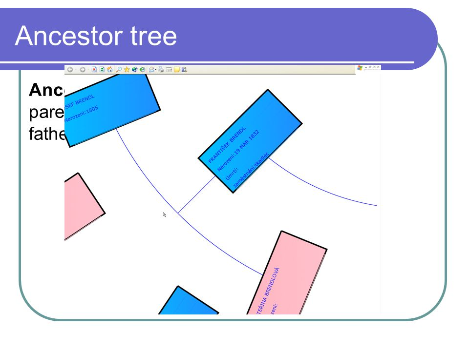 Ancestor tree Ancestor tree – shows (recursively) the parent of an ancestor.