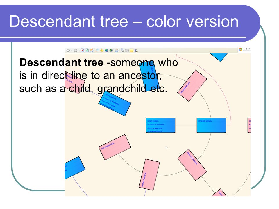Descendant tree – color version Descendant tree -someone who is in direct line to an ancestor, such as a child, grandchild etc.
