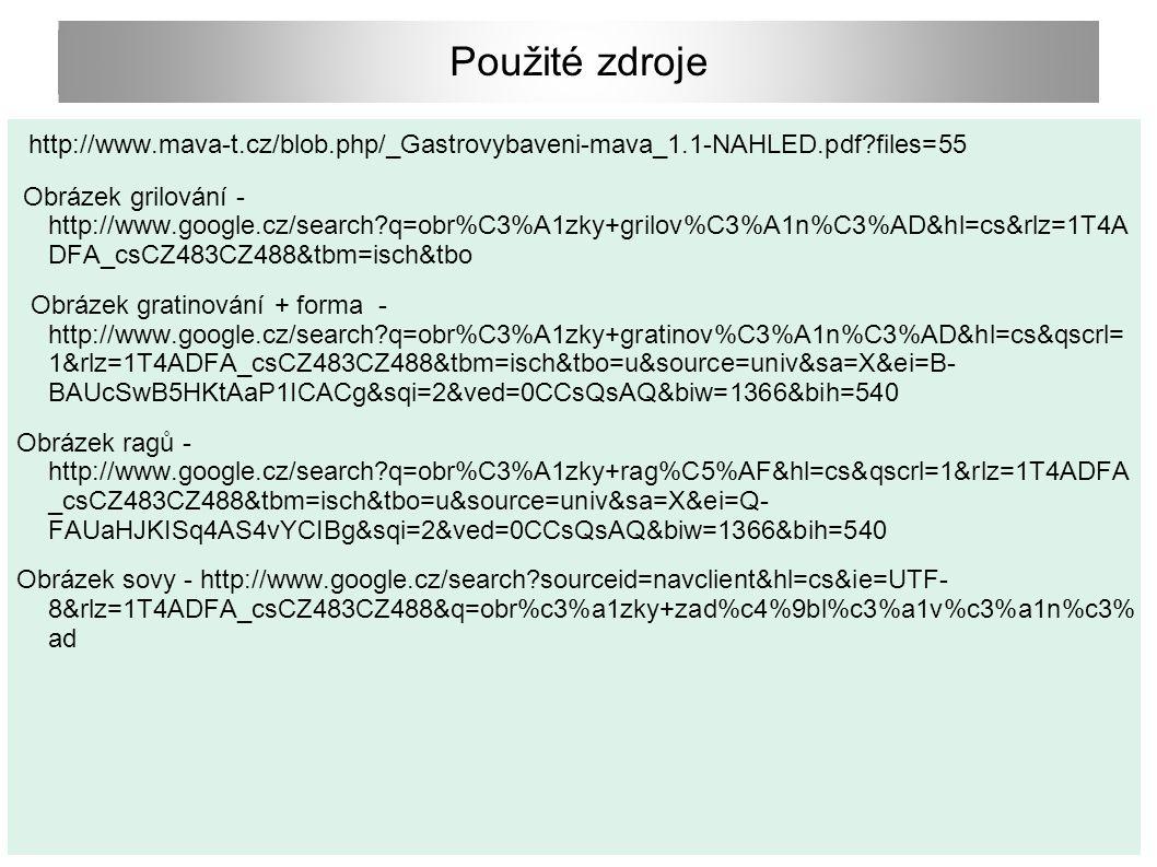 Použité zdroje http://www.mava-t.cz/blob.php/_Gastrovybaveni-mava_1.1-NAHLED.pdf?files=55 Obrázek grilování - http://www.google.cz/search?q=obr%C3%A1z