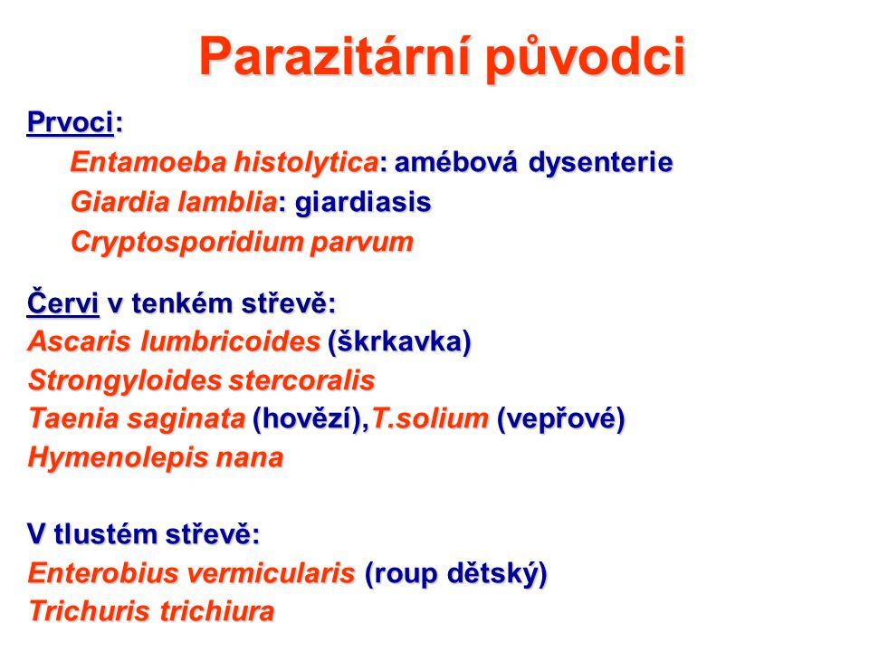 Parazitární původci Prvoci: Entamoeba histolytica: amébová dysenterie Giardia lamblia: giardiasis Cryptosporidium parvum Červi v tenkém střevě: Ascari