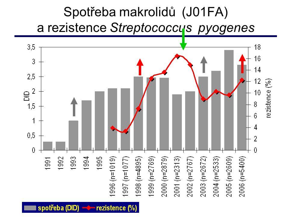 Spotřeba makrolidů (J01FA) a rezistence Streptococcus pyogenes