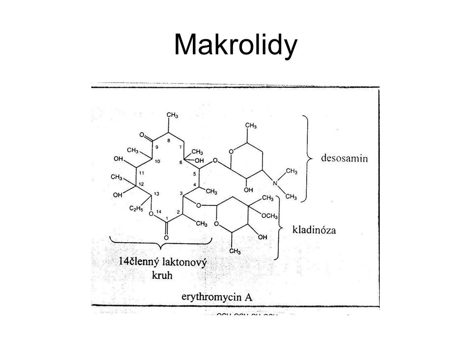 Spektrum účinku Podobné makrolidům: G+ koky (streptokoky, pneumokoky, stafylokoky) Prakticky neúčinné na enterokoky, hemofily, meningokoky, gonokoky, mykoplasmata Významný účinek na anaerobní mikroby, zvláště Bacteroides fragilis Účinek na plasmodia, babesie, Toxoplasma gondii, Pneumocystis jiroveci Klindamycin je obecně účinnější než linkomycin