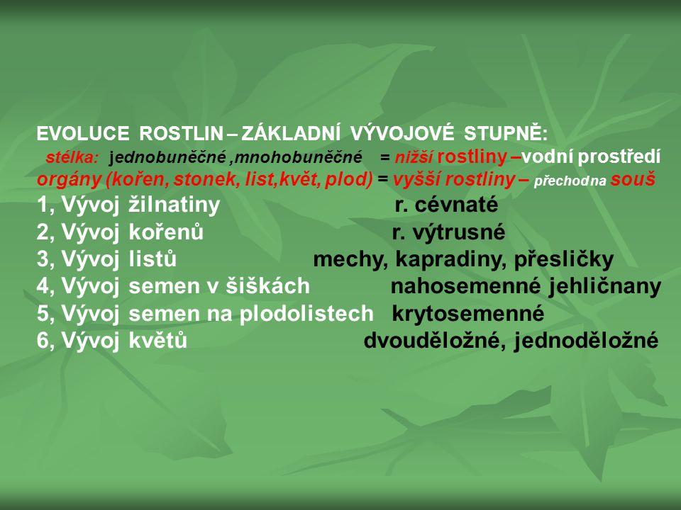 TŘÍDĚNÍ ROSTLIN PODLE NÁROKŮ NA VÝŽIVU využití: Zdravá výživa člověka, OSEVNÍ PLÁNY- pěstování v tratích Rostliny I.