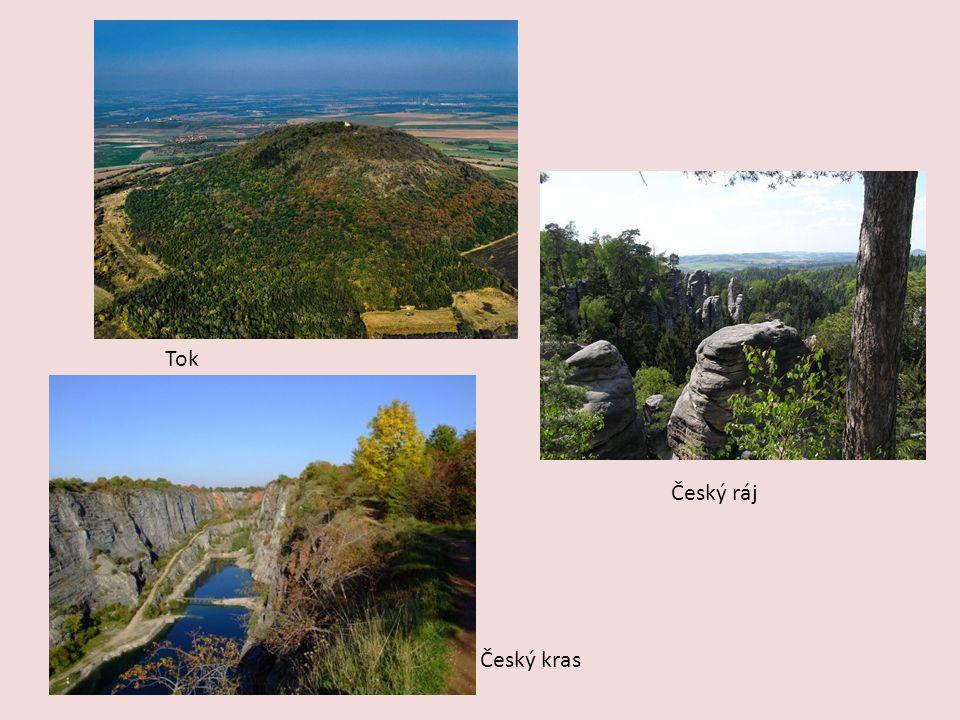 Vodstvo Řeky: Berounka, Vltava, Jizera, Labe, Sázava Vodní nádrže: Orlík, Slapy, Švihov, Vraná Rybníky: Žehuňský rybník