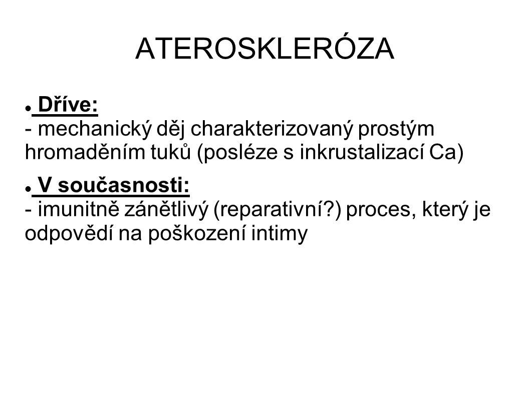 ATEROSKLERÓZA Dříve: - mechanický děj charakterizovaný prostým hromaděním tuků (posléze s inkrustalizací Ca) V současnosti: - imunitně zánětlivý (repa