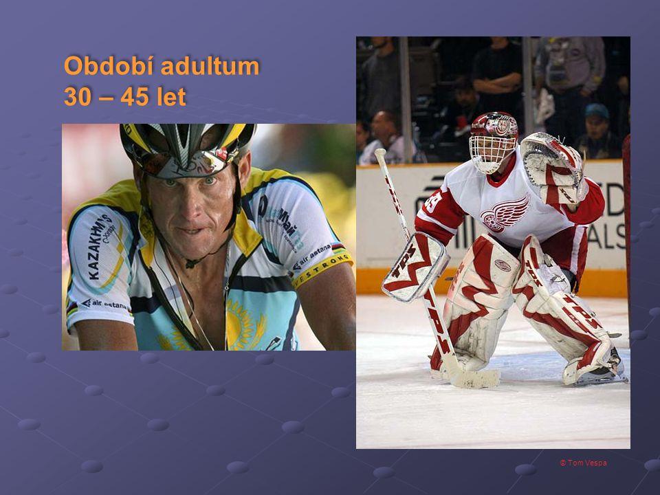 © Tom Vespa Období adultum 30 – 45 let Období adultum 30 – 45 let