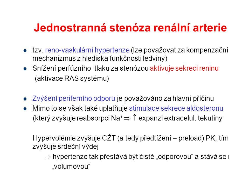 tzv. reno-vaskulární hypertenze (lze považovat za kompenzační mechanizmus z hlediska funkčnosti ledviny) Snížení perfúzního tlaku za stenózou aktivuje