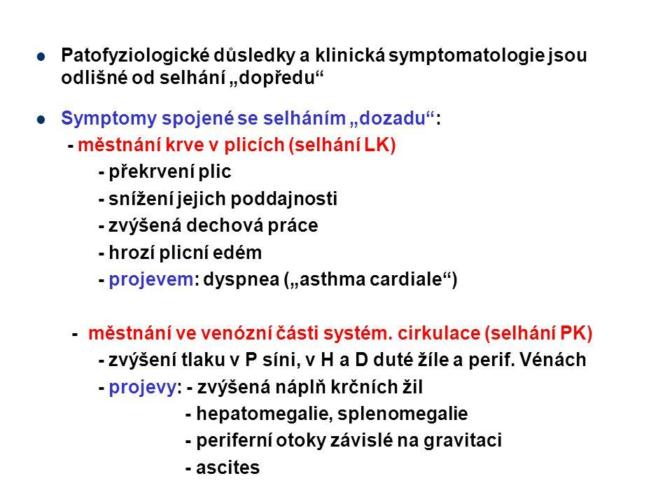 """Patofyziologické důsledky a klinická symptomatologie jsou odlišné od selhání """"dopředu"""" Symptomy spojené se selháním """"dozadu"""": - městnání krve v plicíc"""