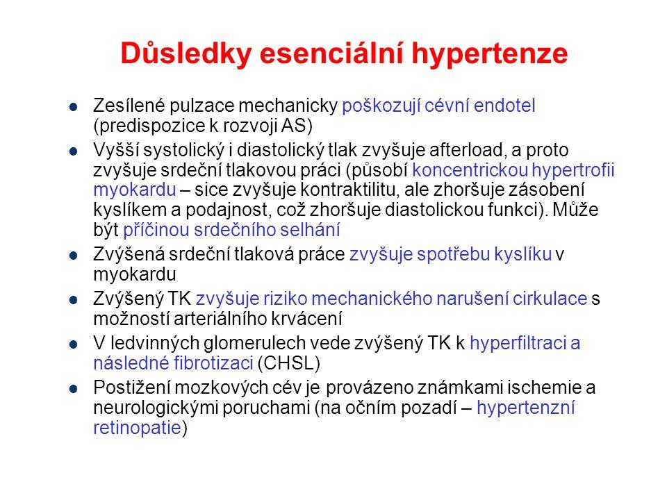 Důsledky esenciální hypertenze Zesílené pulzace mechanicky poškozují cévní endotel (predispozice k rozvoji AS) Vyšší systolický i diastolický tlak zvy