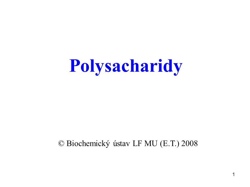 1 Polysacharidy © Biochemický ústav LF MU (E.T.) 2008