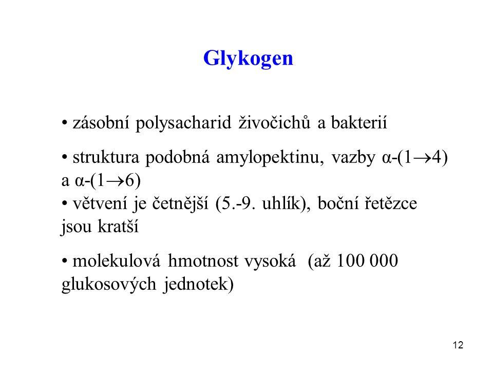 12 Glykogen zásobní polysacharid živočichů a bakterií struktura podobná amylopektinu, vazby α-(1  4) a α-(1  6) větvení je četnější (5.-9.