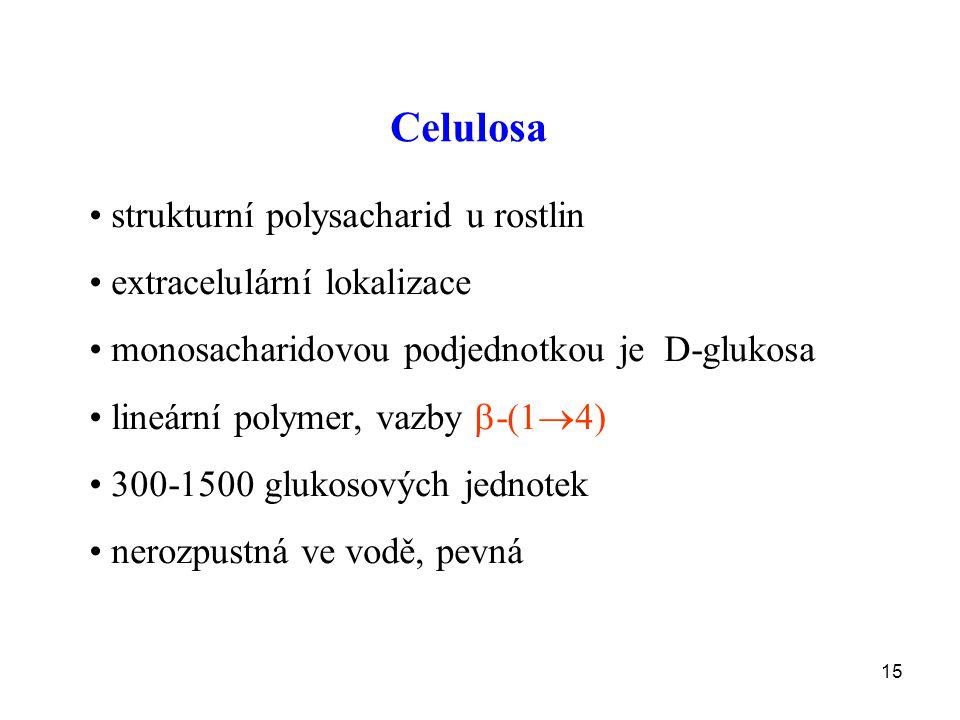 15 Celulosa strukturní polysacharid u rostlin extracelulární lokalizace monosacharidovou podjednotkou je D-glukosa lineární polymer, vazby  -(1  4) 300-1500 glukosových jednotek nerozpustná ve vodě, pevná